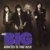 Mr.Big - Addicted To That Rush