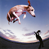Paul Gilbert - Flying Dog