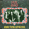 Mr.Big - Green Tinted Sixties Mind